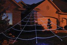 Picture of Mega Yard Spider Web