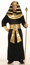 Picture of Egyptian Pharaoh Adult Mens Costume