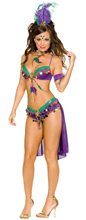 Picture of Adult Womens Mardi Gras Queen Costume