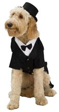 Picture of Dapper Tux Pet Costume