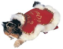 Picture of Queen Cat & Dog Pet Costume