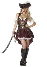 Picture of Sexy Swashbuckler Adult Womens Plus Size Costume