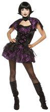 Picture of Velvet Vampire Adult Womens Costume
