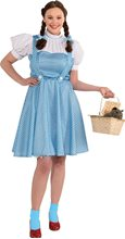 Picture of Dorothy Adult Womens Plus Size Costume