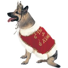 Picture of King Pet Costume