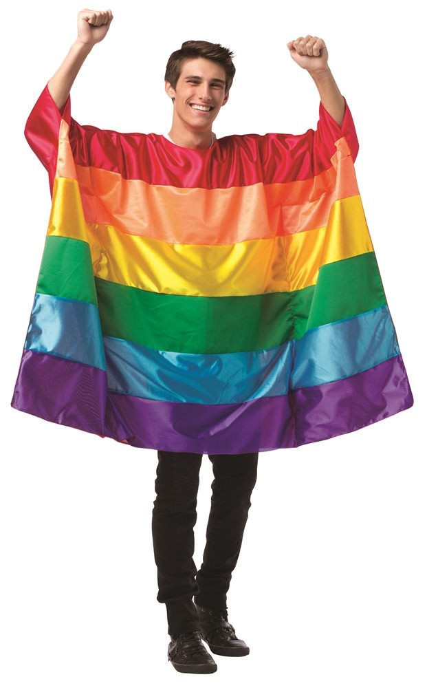 Picture of Rainbow Flag Tunic Adult Unisex Costume