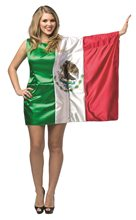 Picture of Mexico Flag Dress Adult Womens Costume