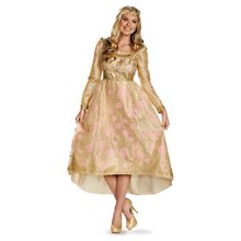 Picture of Aurora Coronation Deluxe Gown Adult Womens Costume