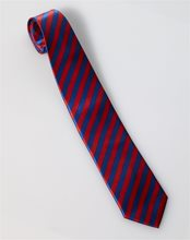 Picture of Roaring 20s Red & Blue Striped Necktie