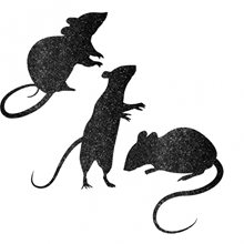 Picture of Glitter Mice Decorations