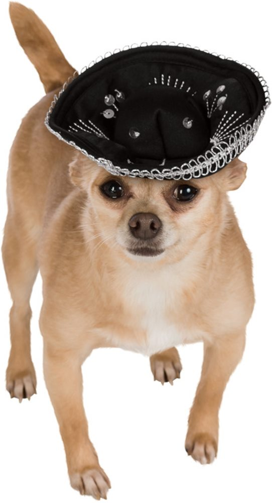 Picture of Sombrero Pet Hat