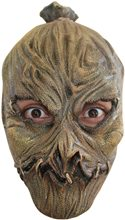 Picture of Scarecrow Child Mask