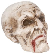 Picture of Rotten Haunted Skull Prop