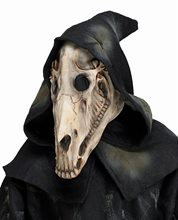 Picture of Horse Skull Mask