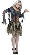 Picture of Zombie Adult Womens Costume with 3D Guts