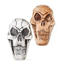 Picture of Scary Foam Skull