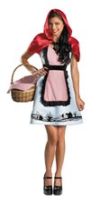 Picture of Fairytale Riding Hood Adult Womens Costume