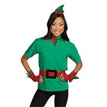 Picture of Satin Glittering Elf Adult Costume Kit