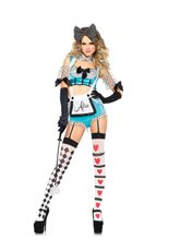 Picture of Vixen Alice Adult Womens Costume