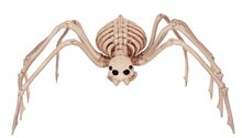 Picture of Spider Skeleton Prop 28in