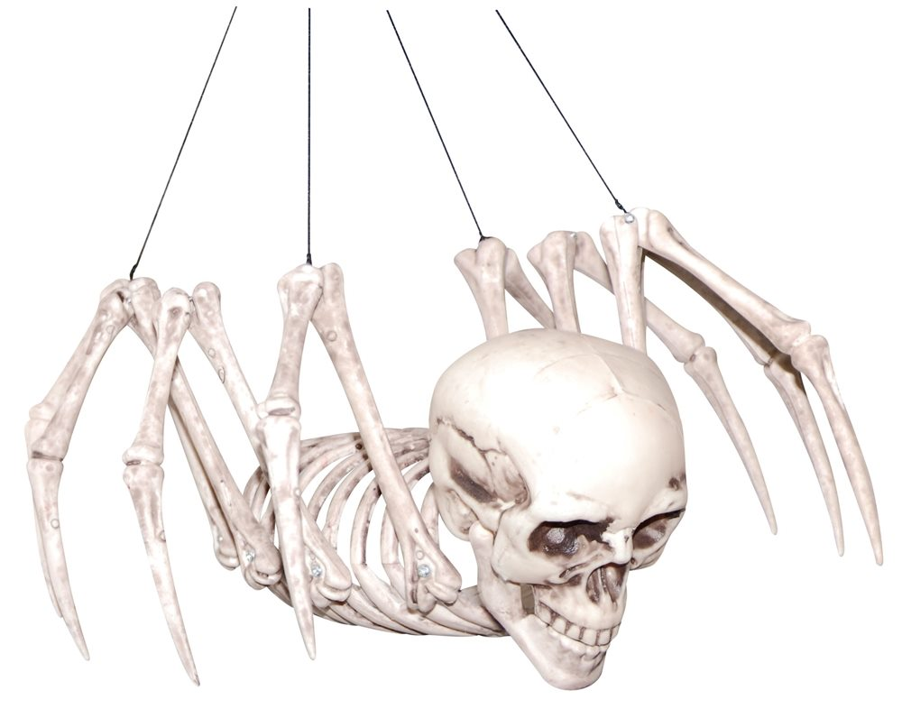 Picture of Hybrid Human Spider Skeleton Prop