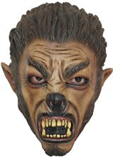 Picture of Growling Wolf Child Mask