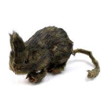 Picture of Styrofoam Rat