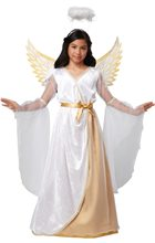 Picture of Guardian Angel Child Costume