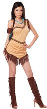 Picture of Native American Beauty Adult Womens Costume
