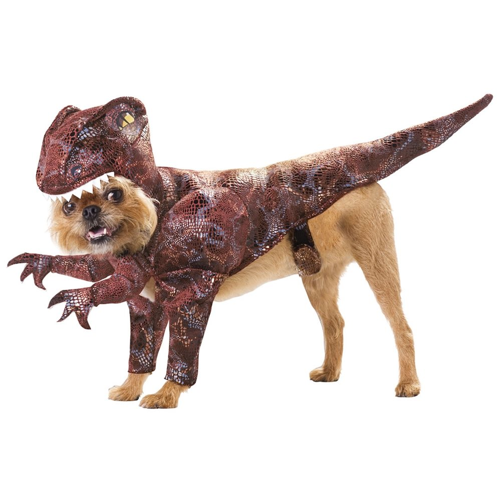 Picture of Animal Planet Raptor Pet Costume