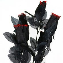 Picture of Black Roses with Blood Decoration