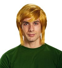 Picture of Zelda Link Adult Wig