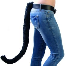 Picture of Black Cat Tail