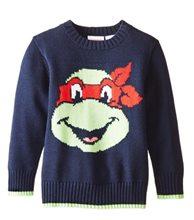 Picture of Teenage Mutant Ninja Turtles Toddler Sweater