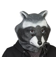 Picture of Raccoon Adult Latex Mask