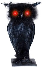 Picture of Light-Up Black Owl with Sound Prop