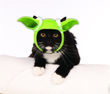 Picture of Star Wars Yoda Ears Cat Headband
