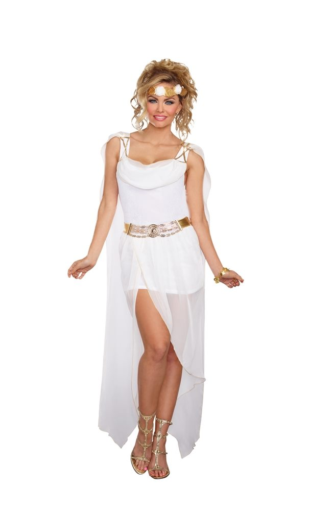 Picture of Its Greek to Me Goddess Adult Womens Costume