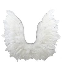 Picture of White Wings with Lace 17in