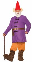 Picture of Garden Gnome Adult Mens Costume