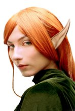 Picture of Large Elf Ears
