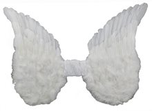 Picture of White Wings with Lace 15in