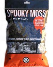 Picture of Spooky Reindeer Moss