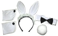 Picture of Sexy Bunny Adult Accessory Set