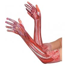 Picture of Blood & Muscle Long Gloves