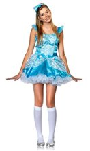 Picture of Miss Fairytale Princess Juniors Costume