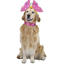 Picture of Cute Lil' Butterfly Pet Costume
