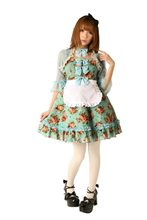 Picture of Alice Rose Garden Dress Adult Womens Costume
