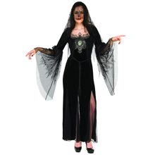 Picture of Mourning Gothic Maiden Adult Womens Costume