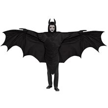 Picture of Wicked Winged Bat Adult Mens Costume